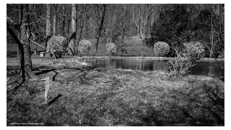 Pond-9x16_Border_wm