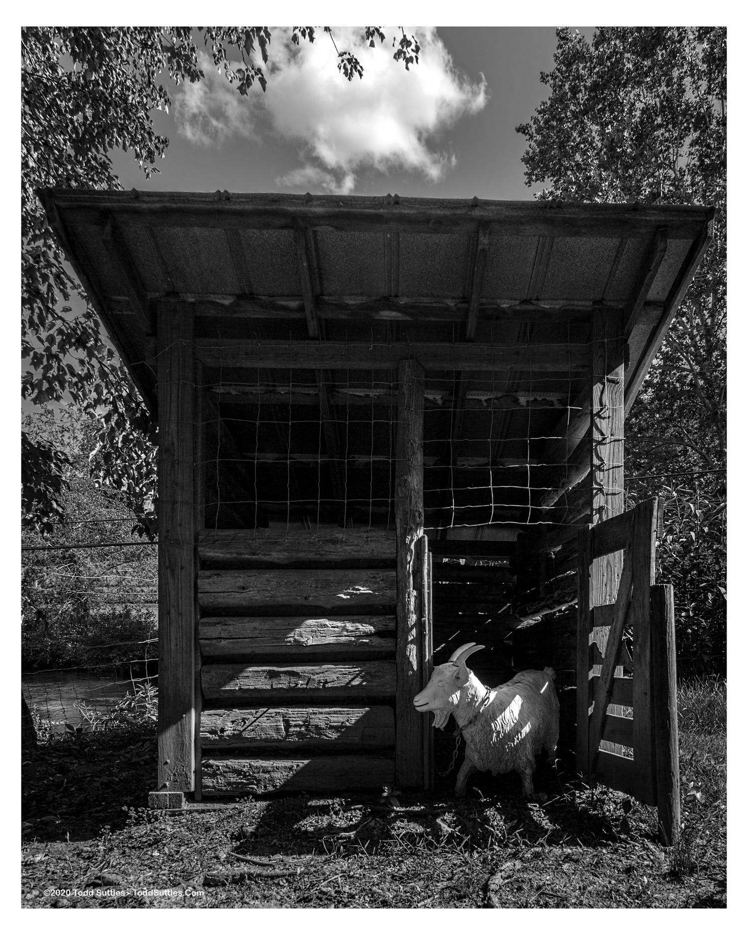 Reality-Farming-16x20_Border_wm